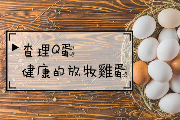 健康的放牧雞蛋-查理Q蛋